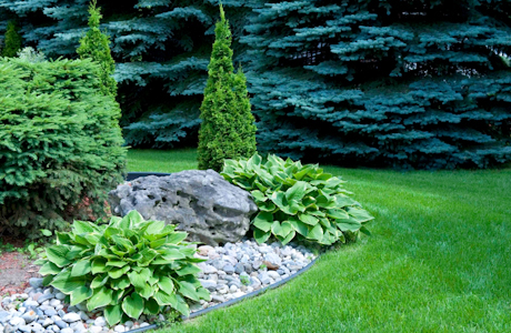 Albuquerque, NM. Landscaping Contractor Insurance